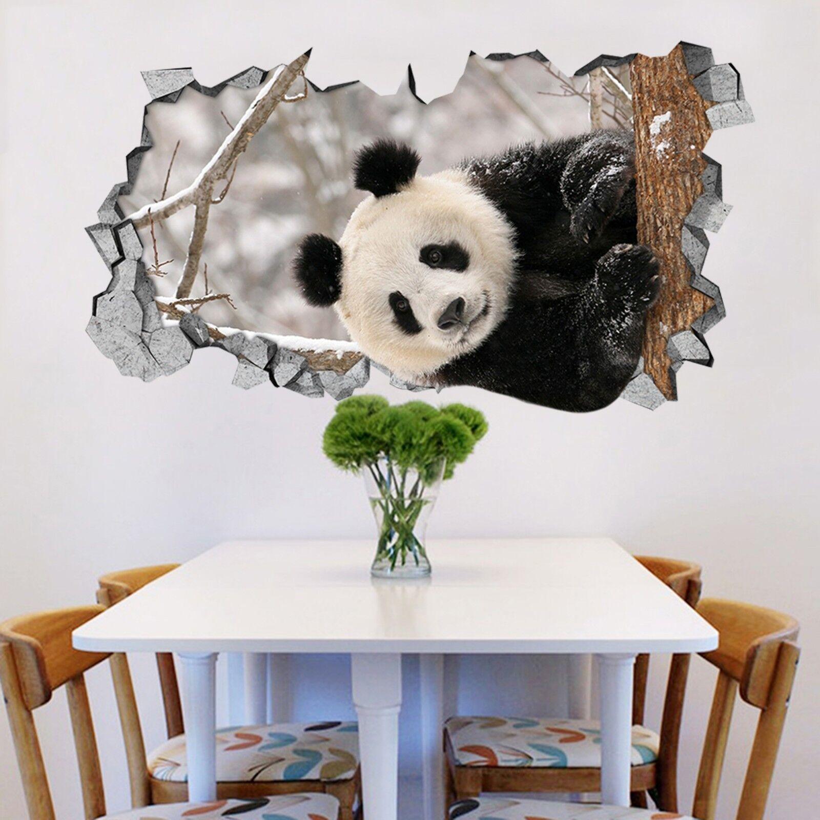 3D Schnee Panda 320 Mauer Murals Mauer Aufklebe Decal Durchbruch AJ WALLPAPER DE