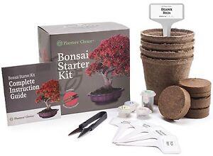 Planters-039-Choice-Bonsai-Starter-Kit-Complete-Kit-to-Easily-Grow-4-Bonsai-Trees