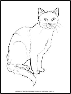 Details Zu Malbuch 48 Malvorlagen Knuffige Katzen Ausmalbilder Als Pdf Kinder Malen