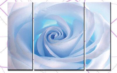 BLUE ROSE XXL 3 BILDER LEINWAND BLUMEN NATUR 3300160 WANDBILD FLOWER