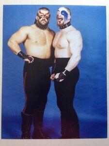 Road-Warriors-11x14-Photo-Hawk-Animal-Nwa-Awa-Rare-Vintage-Wrestling-Photo-Wwe