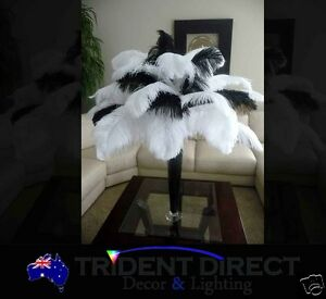 Bulk-12x-Large-Ostrich-Feathers-65-70cm-26-28-For-Vase-Decor