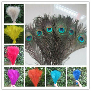 Wholesale 10/100pcs Natural peacock tail feathers 25-30cm / 10-12inches