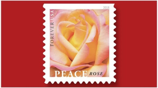 Usps Wedding Stamps.Love Flourishes 1 Sheets Of 20 Usps First Class Forever Postage Stamps Wedding