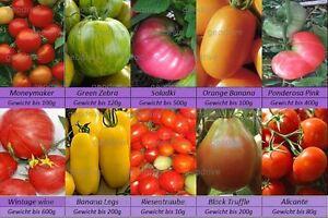 Tomatensamen-Raritaeten-10-alte-Sorten-mix-Eier-Fleisch-Cocktail-Samen-Saatgut