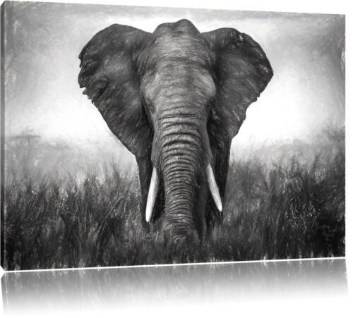 prachtvoller Elefant Leinwandbild Wanddeko Kunstdruck
