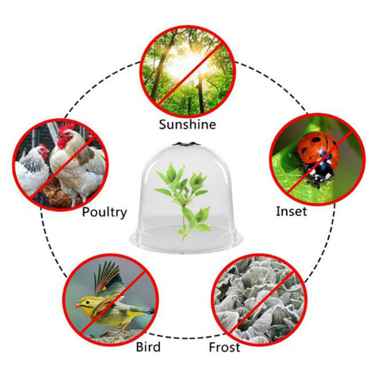 1PC GARDEN PLASTIC PLANT NURSERY INSULATION COVER FOR OUTDOOR FRUITS FLOWERS