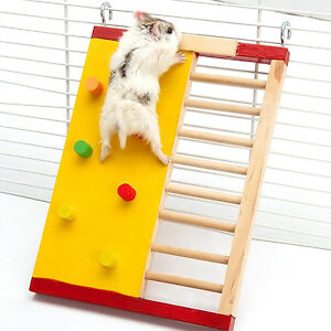 Wooden-Platform-Pet-Rat-Mouse-Hamster-Climbing-Ladder-Gym-Exercise-Funny-Toys