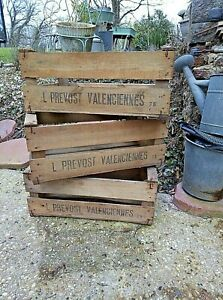 Vintage ancienne grande caisse en bois à pommes de Valenciennes