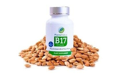 Vitamin B17 - 100% pure Laetrile - purest available (10 Pack)