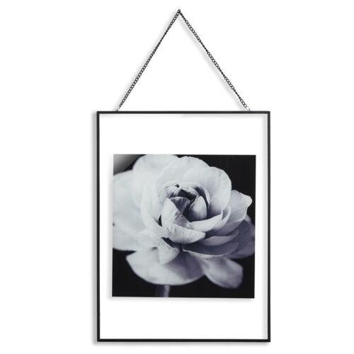 Black /& White Rose Fleur Floral encadrée Imprimer Wall Art Photo Wall Hanging