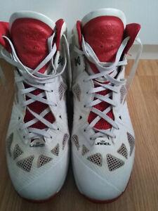 Nike Mr. Lebron James 828 Limited