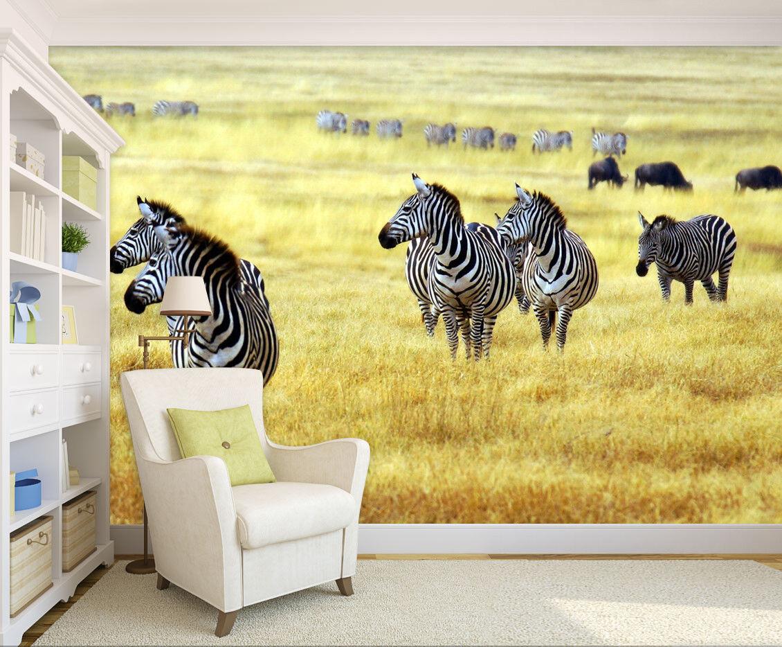 3D Gras Zebra 577 Tapete Tapeten Mauer Foto Familie Tapete Wandgemälde Summer