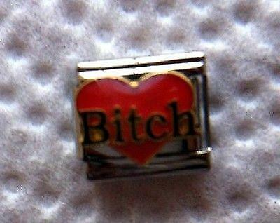 9mm Italian Charm L34 Don/'t mess with the ALPHA BITCH Fits Classic Size Bracelet