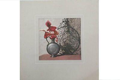 1964 Warmes Lob Von Kunden Zu Gewinnen Colorprint Seidendruck Kunstdruck Auf Seide