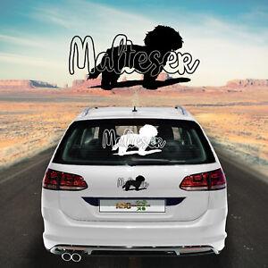 Autocollants Pour Voiture Maltais M1 Sticker Film De Chiens