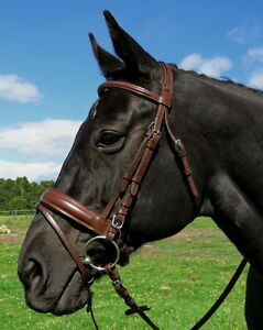 FSS-German-COGNAC-LIGHT-BROWN-Comfort-Padded-Posh-Oval-Dressage-CRANK-Bridle-NEW