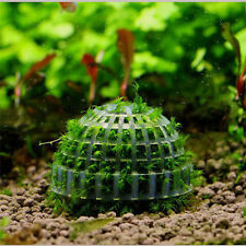 1.97in Aquarium Fish Tank Natural Mineral Moss Ball Filter for Live Plant Shrimp