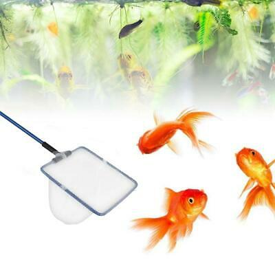 Metallrahmen Aquarium Goldfisch Fisch Kescher M7T5 A9H4 C1K5