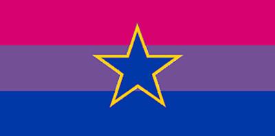 Bi-pride Flagge Bügelbild Markenqualität Waschbar Bis95°c 4x10cm Moderate Kosten