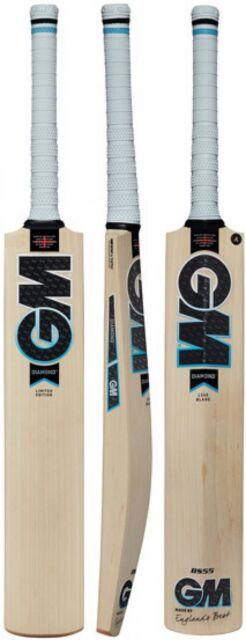 Gunn /& Moore Haze 202 Junior Kashmir Willow Cricket Bat