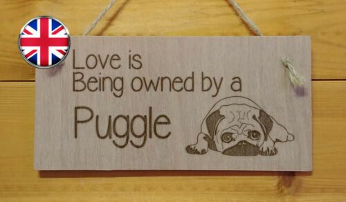 Engraved plaque Gift Sign Dog Home,Pet.Kennel Love is being owned by a Puggle