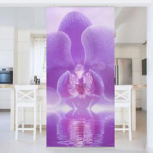 Das Bild Wird Geladen Raumteiler Lila Orchidee Auf Wasser 250x120cm Vorhang  Flaechenvorhang