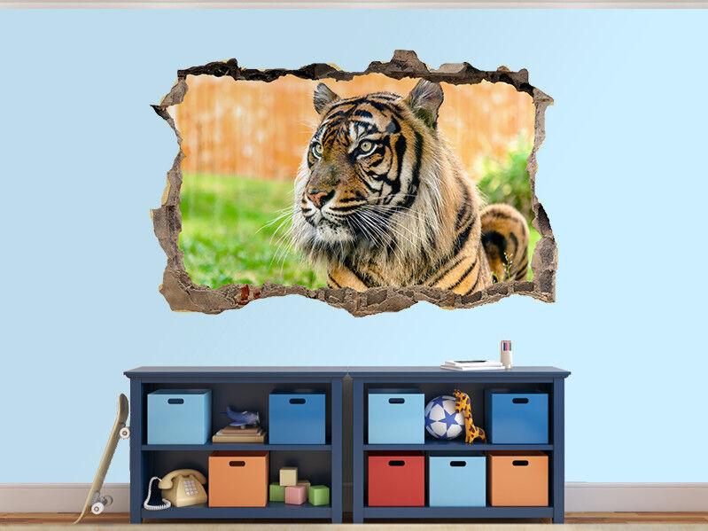 Tigre Bengale Beau dans Photo Trou dans Beau Autocollant Mural Décoration (104087513) 1f69ef
