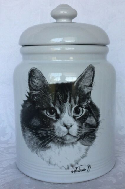 Cookie Jar Maine Inspiration ROSALINDE VLADIMIR TZENOV CAT MAINE COON CANISTER TREAT COOKIE JAR