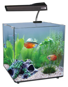 AquaNano-40-Glass-Aquarium-55L-Complete-Stunning-Fish-Tank-Set-LED-Filter-Heater