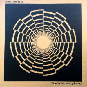 Details about DEAD RABBITS – Time Is Your Only Enemy VINYL LP BRAND NEW  Shoegaze MBV Psych