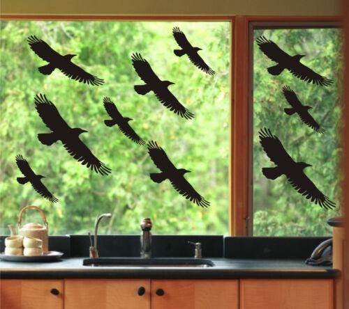 Choix Fenêtre Autocollant Décor de Oiseaux Avertissement Conservatoire Couleur