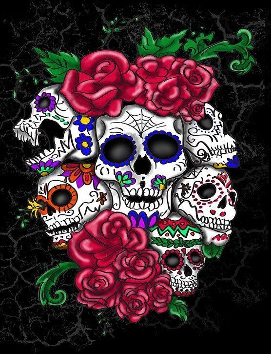 New Six Skulls & pinks Plush Throw Gift Blanket Sherpa Ardras Day of the Dead