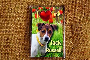 Jack Russell Terrier Gift Dog Fridge Magnet 77x51m Birthday Gift Stocking Filler