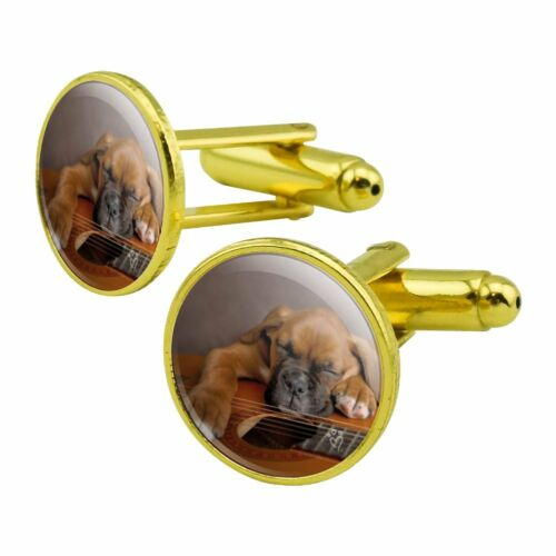 Boxer Puppy Dog Sleeping on Guitar Round Cufflink Set Gold Color
