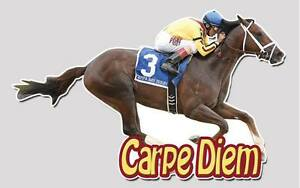 Carpe Diem Full Color Decal