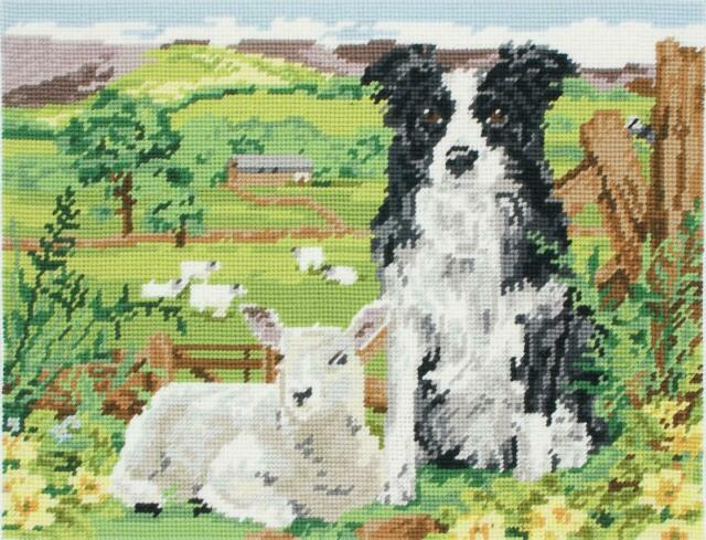 MR7004 Anchor Tapestry Kit Wool Gift Canvas Border Collie and Lamb
