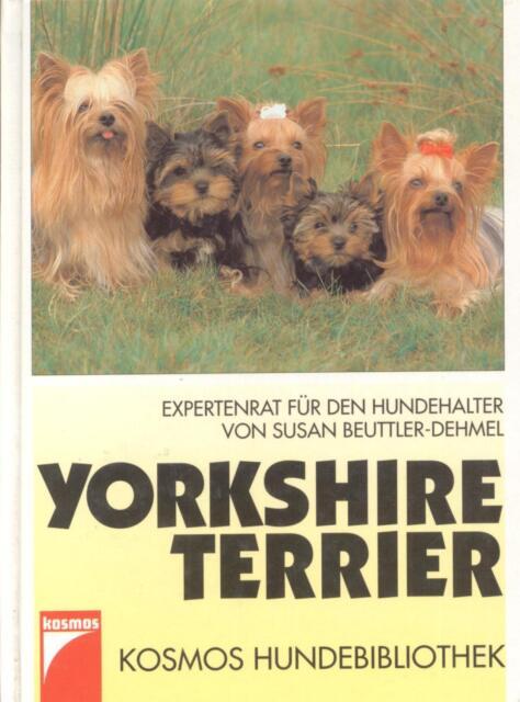 """Yorshire Terrier"" - Susan Beuttler-Dehmel - Ratgeber - Terrier-Haltung"