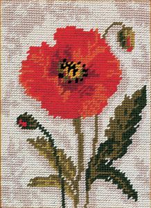 Starters Needlepoint Tapestry Kit MR911 Anchor Poppy