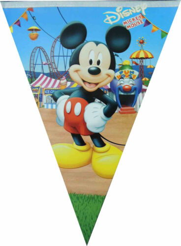 THEMED FLAG BANNER TRIANGLE BUNTING BIRTHDAY PARTY SUPPLIES WALL DECORATION 1PK