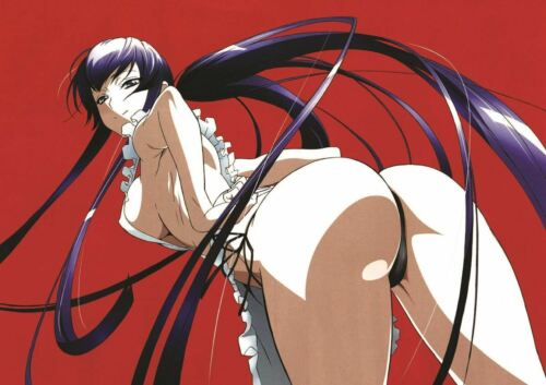 High SCHOOL OF THE DEAD MANGA ANIME PRINT ART POSTER PICTURE a3 Size gz1621