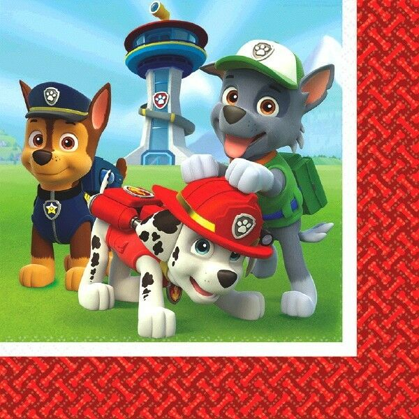 PAW PATROL PARTY SUPPLIES LUNCH NAPKINS OR BEVERAGE NAPKINS  OR BEVERAGE PLATES