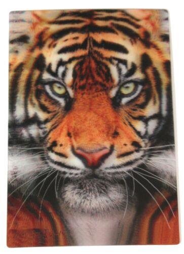 TIGER FACE 3D LENTICULAR  MINI PRINTS POST CARD SIZE
