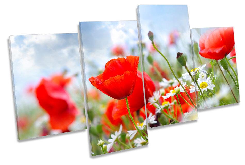 Floral Meadow Field Field Field Flowers MULTI CANVAS WALL ART Framed Panel cfadcc