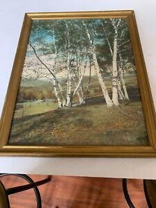 Charles-Sawyer-hand-colored-photo-Pownal-Valley-Birch-trees-Maine