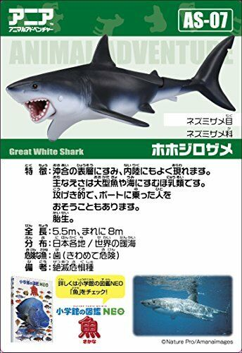 New Takara Tomy Ania AS-7 Great White Shark