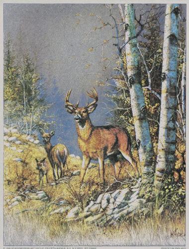 DEER Foil Art Print~Affordable Art~8x10 Animal Matted Buck Doe /& Fawn