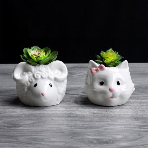 Cute Cat Pattern Ceramic Flower Pot  Succulents Cactus Plants Mini Pot Plantervb
