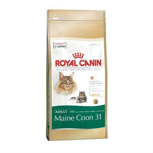 ROYAL CANIN PER GATTI GATTO maine coon cibo secco MIX 4kg