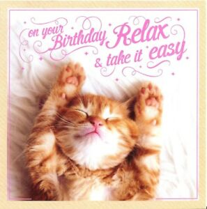 Image Is Loading FUNNY BIRTHDAY CARD WITH CUTE KITTEN CAT IMAGE